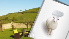 Diseño de producto experiencial para el Club de calidad Cantabria Infinita
