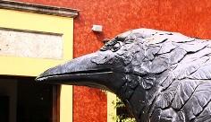 Puro Cuervo experiencial