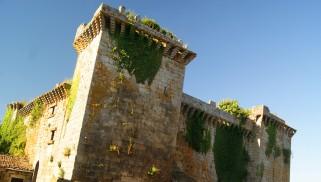Recuperando el castillo de Pambre